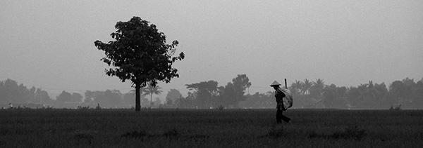 hak asasi petani
